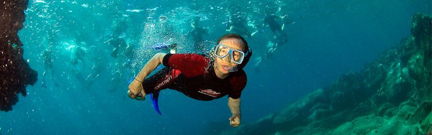 snorkeling_mini_banner