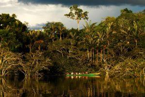 rowing-Cuyabeno-river-(1)